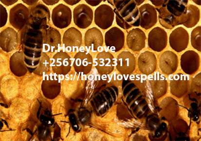 love spells,lost love spells,authentic love spells,Real Love Spells,true love spells,Spell to Make Someone Fall in Love,Spells To Remove Marriage and Relationship Problems,Truth Love Spells,Spell to Mend a Broken Heart,Rekindle Love Spells,spells to Turn Friendship to Love,Lust Spell and Sex Spells,Spells to Delete the Past,voodoo love spells,black magic love spells,witchcraft love spells, Attraction Spells,Powerful Attraction Love Spells,love spells,Attraction love Spells,black magic Attraction Spells,beauty and Attraction Spells,easy love Attraction Spells,magic spells for attraction,witchcraft Attraction Spells,Wicca Attraction Spells,voodoo Attraction Spells,real Attraction Spells,lust Attraction S