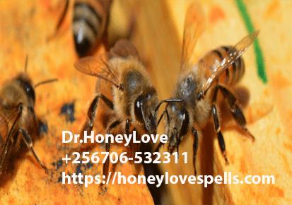 Honey Jar Spell for Reconciliation In USA - spells using
